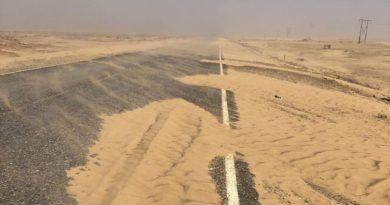 Борьба с опустыниванием – под запретом